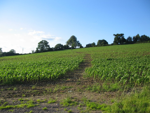 Footpath to Lamyatt Lodge