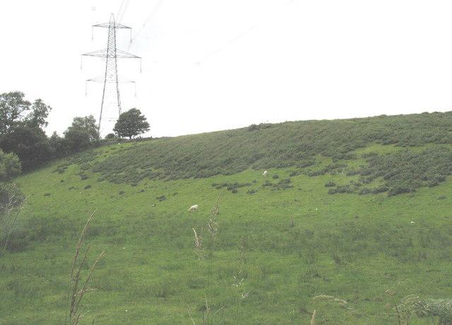 Valley slope at Pont Cae-cerrig