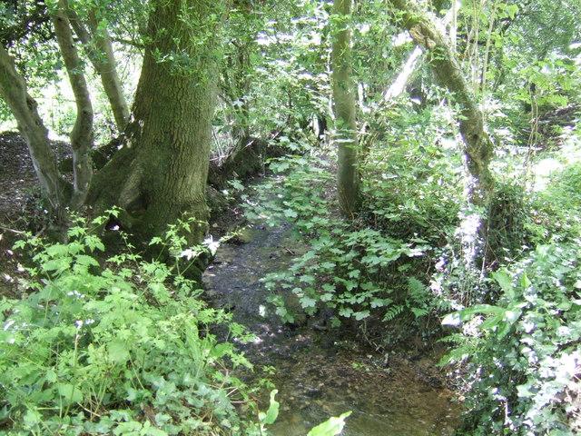 Lerryn headwaters