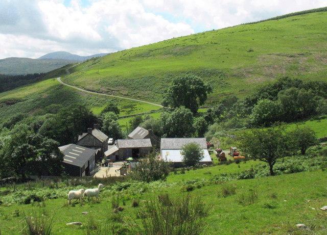 Fferm Bedd y Coedwr Farm from the East