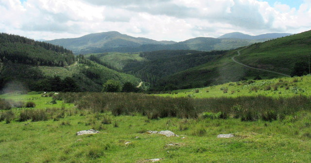 View towards the Coed y Brenin Forest from a point east of Bedd y Coedwr