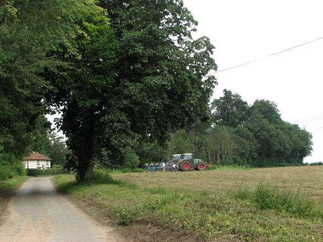 Road past Hackford Hall