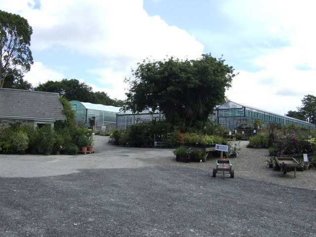 Nursery at Laveddon Mill