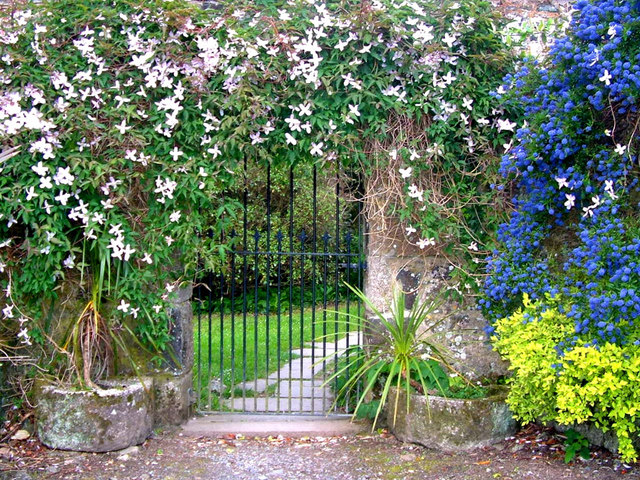 Gate & flowers, Trelowarren House