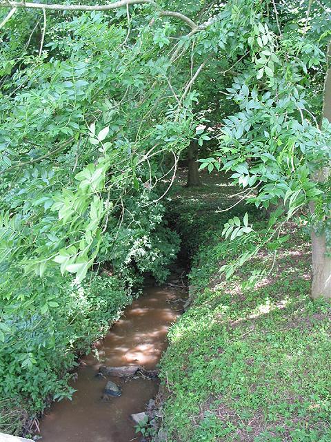 Stream through Aston Ingham