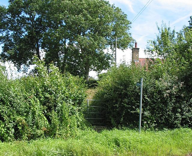 Overgrown footpath, Kilcot