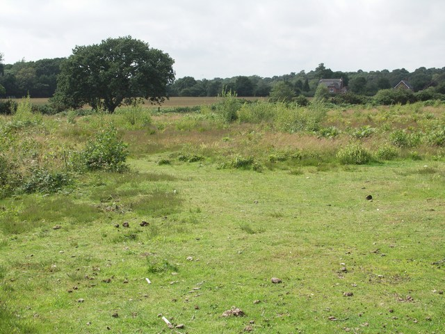 Cranemoor Common