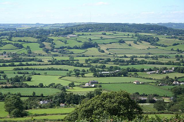 Musbury: the Axe valley
