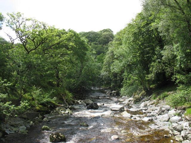 The River Mawddach downstream of the Tyddyn-mawr footbridge