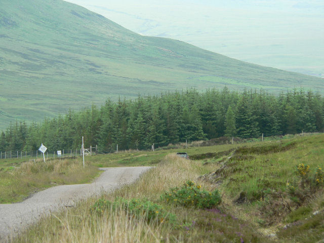 Forest to north of Cnoc Staing