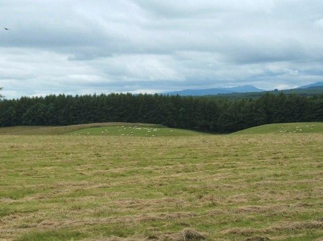 Looking West from Gateside