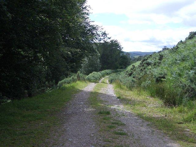Blairmore track