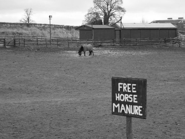 Free horse manure?
