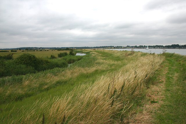 Chelmondiston Marsh