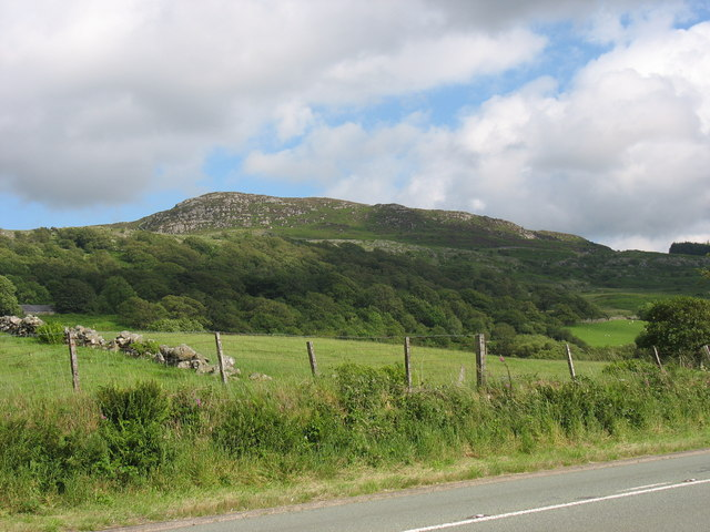 Fields and wooded hillside east of the A470