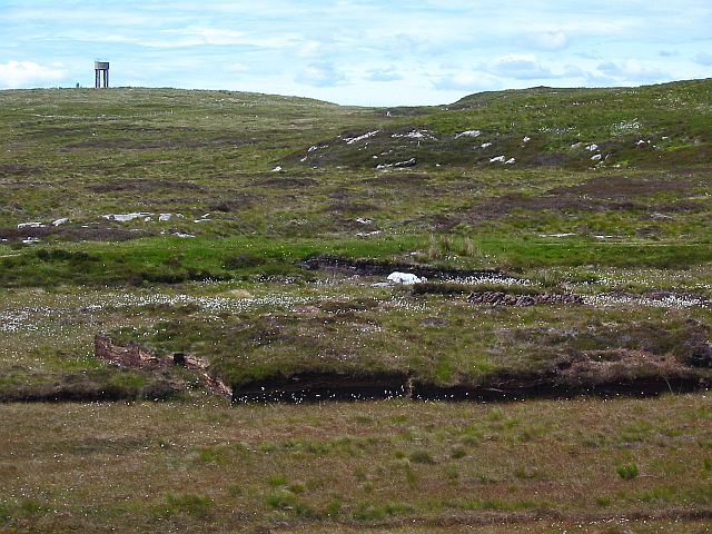 Peat Cuttings, Bog Cotton and Water Tower