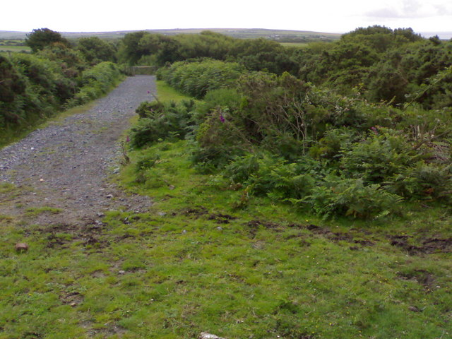 Bridleway to Pitton Cross