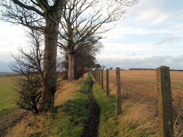 Footpath to Elsecar.