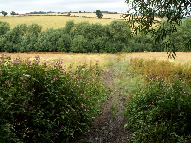 Footpath from old railway track to Bleakley Dike
