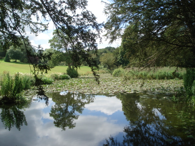 The Lily Pond at Kyre Park Garden