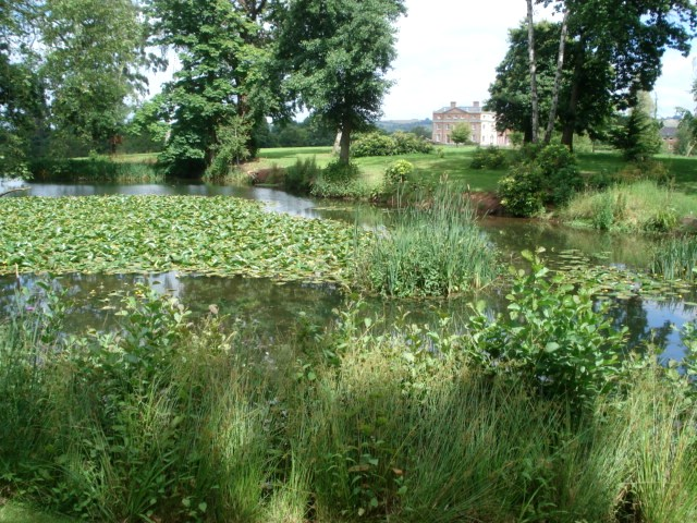 The River at Kyre Park Garden