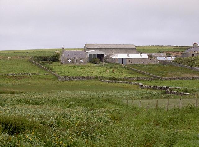 Dam of Fribo