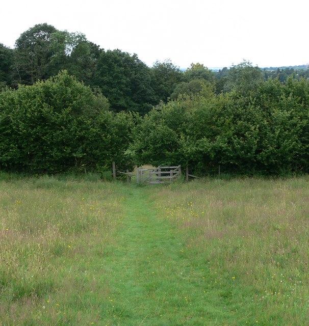 Public footpath into Eymore Wood