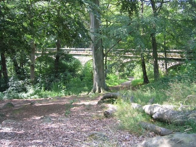 Seven Arches Aqueduct over Adel Beck #3