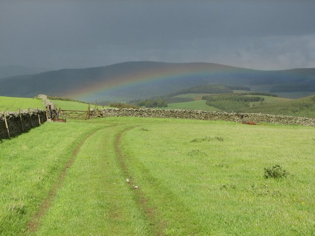 Traquair Rainbow