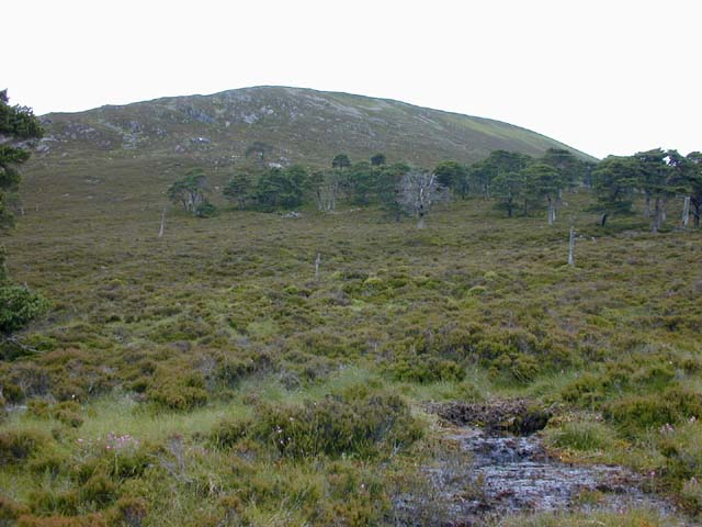 Below the Bruach Mhor