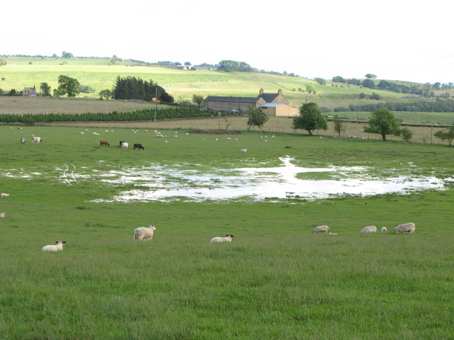 Flooded pastures above Anton Hill Farm