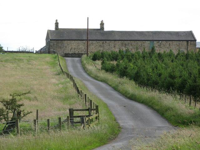Anton Hill Farm