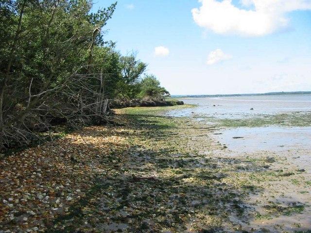 Arne Peninsula next to Wareham Channel