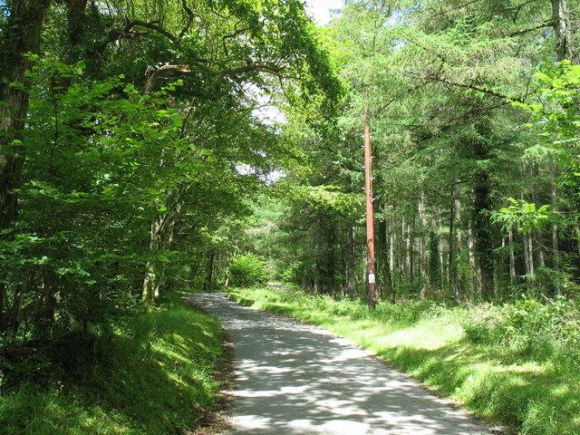 Cwmheisian road north of Dolfrwynog