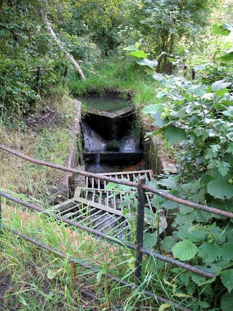 Unnamed Stream - Decoy Brook
