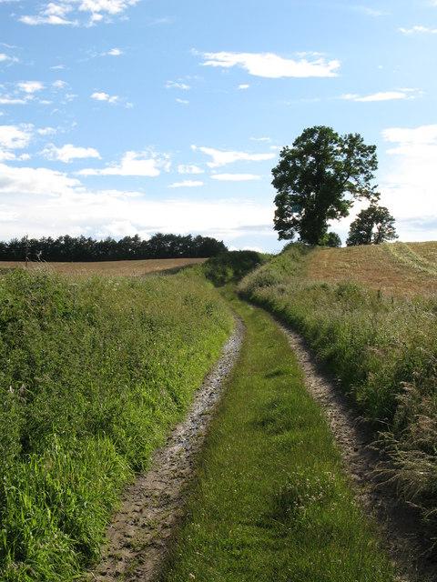 Track near Wark
