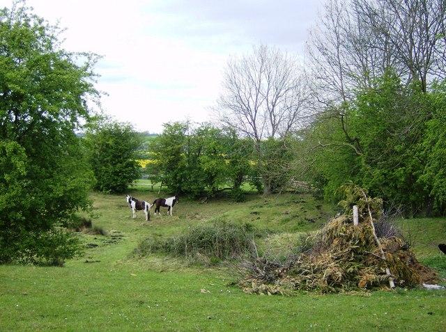 Towards Foxhill Farm