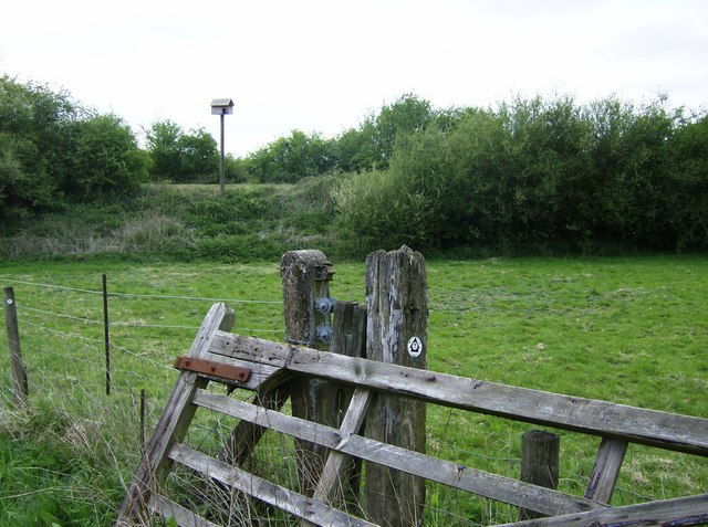 Owl box on the former railway line