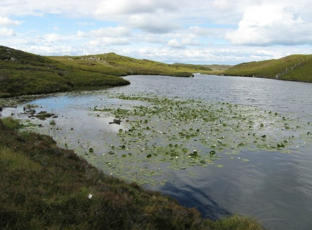 Lochan with water lilies