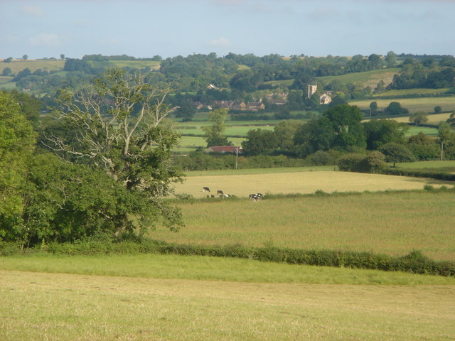 Fields towards East Chinnock