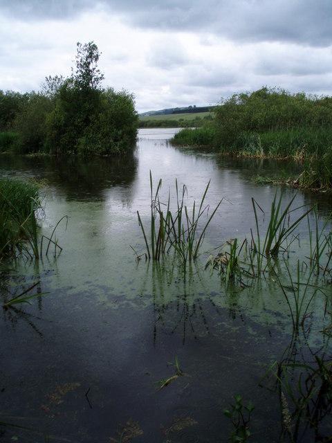 Kinnordy Loch in the rain