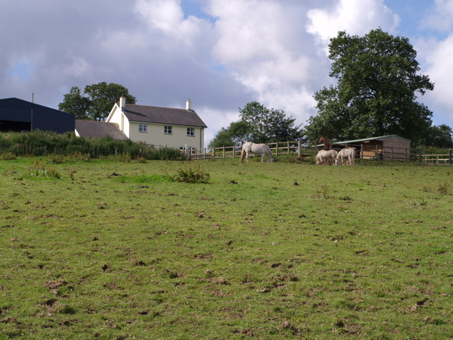 Lower Worth Farm