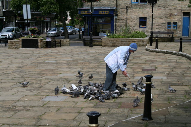 Feeding pigeons in Barnoldswick's Town Square
