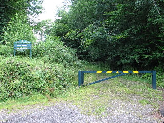 Botany Bay - track through Coed Beddick wood