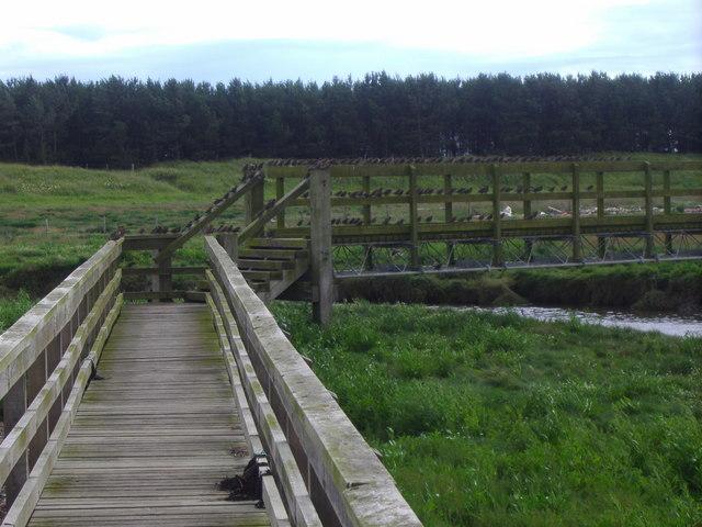 Footbridge over Cocklemill Burn