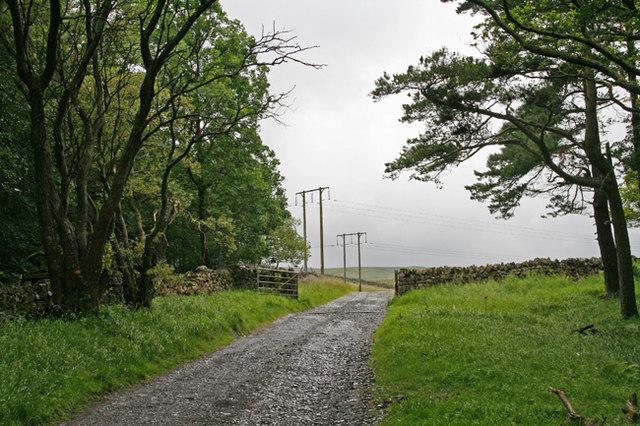 Gate on lane