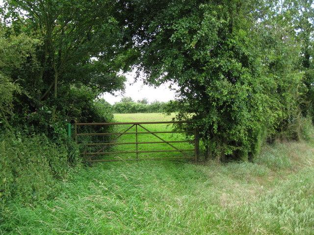 Grass field and gate near Cutler's Green