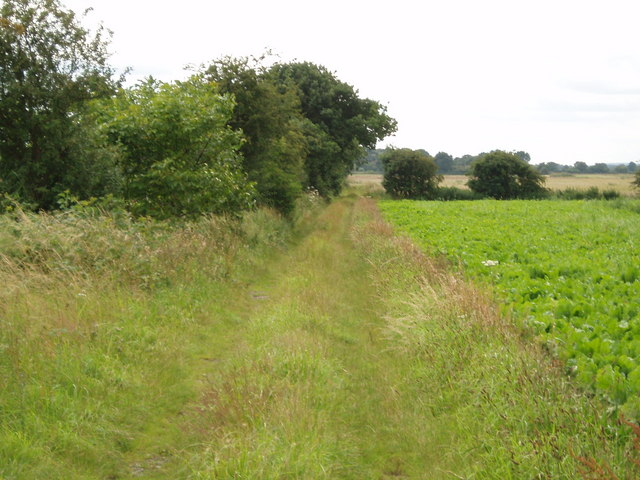 Lane to Sandhill Farm