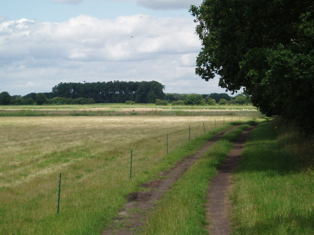 Towards Epworth Turbary from Haxey Turbary