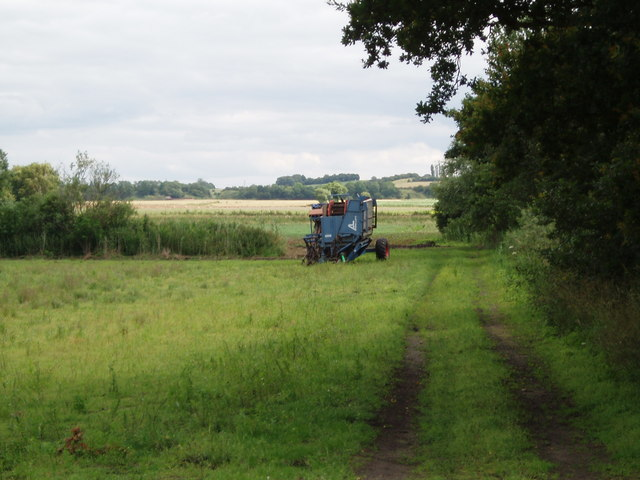 Carrot Harvester on Haxey Carr